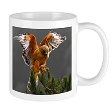 Red Shouldered Hawk Mug