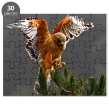 Red Shouldered Hawk Puzzle