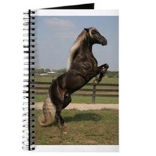 Funny Rocky mountain horse Journal