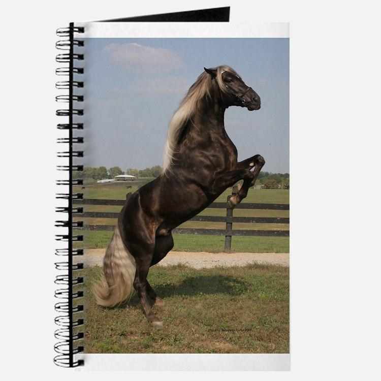 Cute Kentucky mountain saddle horse Journal