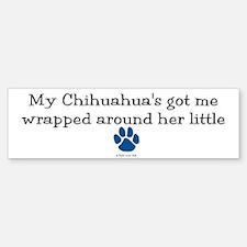 Wrapped Around Her Paw (Chihuahua) Bumper Bumper Sticker