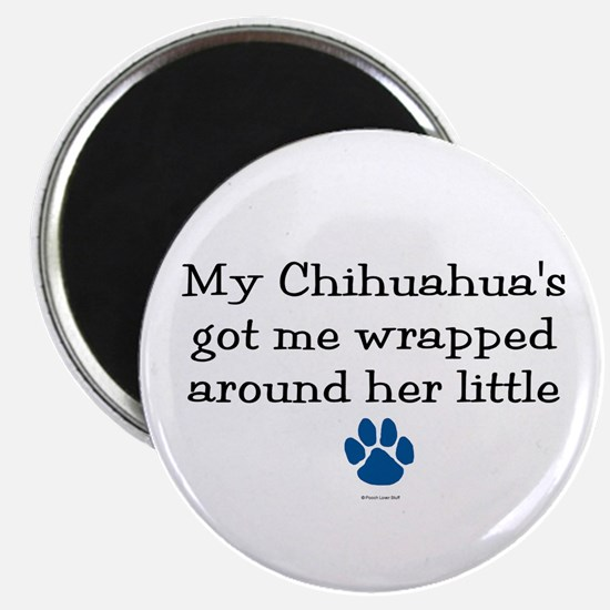 Wrapped Around Her Paw (Chihuahua) Magnet