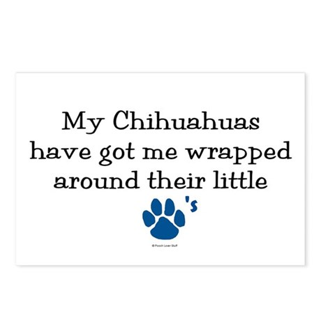 Wrapped Around Their Paws (Chihuahua) Postcards (P