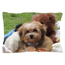 Copper the Morkie Pillow Case