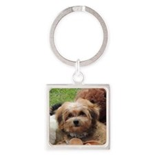 Copper the Morkie Square Keychain