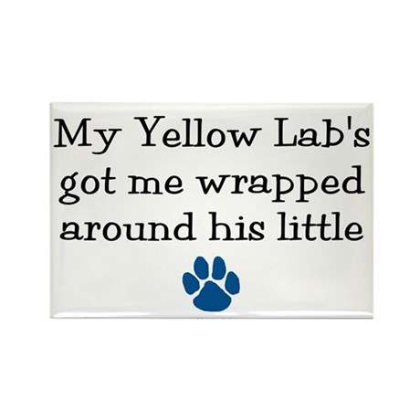 Wrapped Around His Paw (Yellow Lab) Rectangle Magn