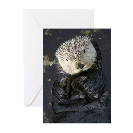 OTTERVILLE Greeting Cards (Pk of 10)