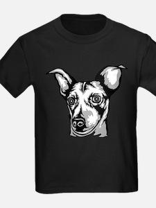 Rat Terrier T