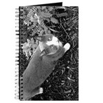 Little Grey Cat Journal