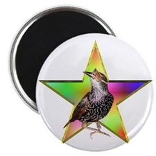 """The STAR 2.25"""" Magnet (10 pack)"""