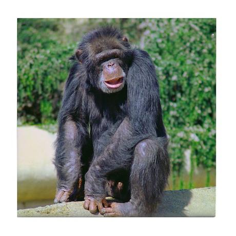 Old Chimp on a Rise Tile Coaster