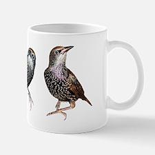 Cute Starling Trio Mug