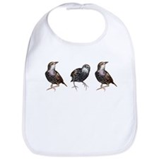 Cute Starling Trio Bib