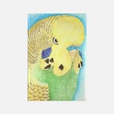 Yellow & Green Budgie Rectangle Magnet