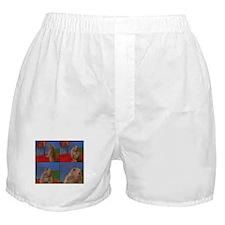 Dramatic Look Boxer Shorts