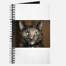 Tortoiseshell Cat Journal