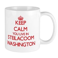 Keep calm you live in Steilacoom Washington Mugs