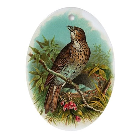 Singing Thrush Oval Ornament