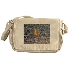 Cute Robin Messenger Bag