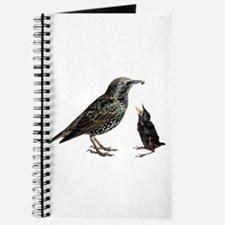 Starling Mom & Baby Journal