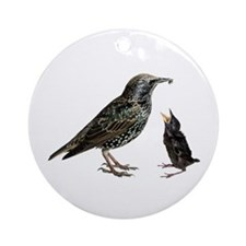 Starling Mom & Baby Ornament (Round)