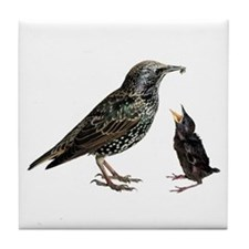 Starling Mom & Baby Tile Coaster