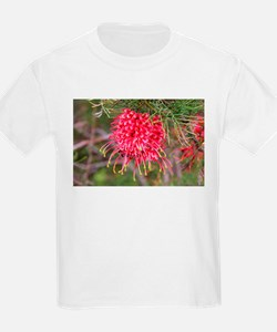 Red grevillea flower T-Shirt
