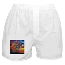 Magic Animals THE LION Boxer Shorts