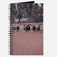 Helaine's Horse Race Journal