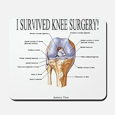 Knee Surgery Gift 3 Mousepad
