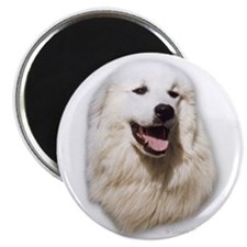 Great Pyrenees Tevka Magnet