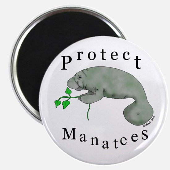 Protect Manatees Magnet