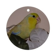 Male Yellow Parrotlet Ornament