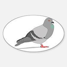 Cartoon Pigeon Decal