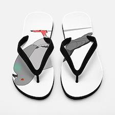 Cartoon Pigeon Flip Flops