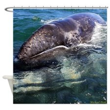 Gray Whale Baby Shower Curtain