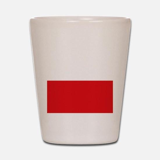 Polish flag Shot Glass