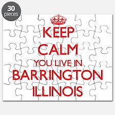 Keep calm you live in Barrington Illinois Puzzle
