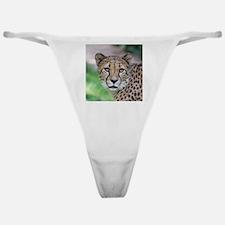 Cheetah_2014_0901 Classic Thong