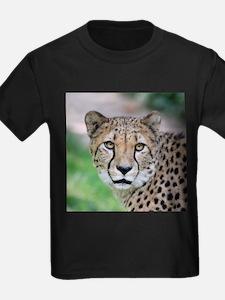 Cheetah_2014_0901 T-Shirt