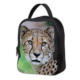 Cheetahs Neoprene