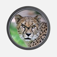 Cheetah_2014_0901 Wall Clock