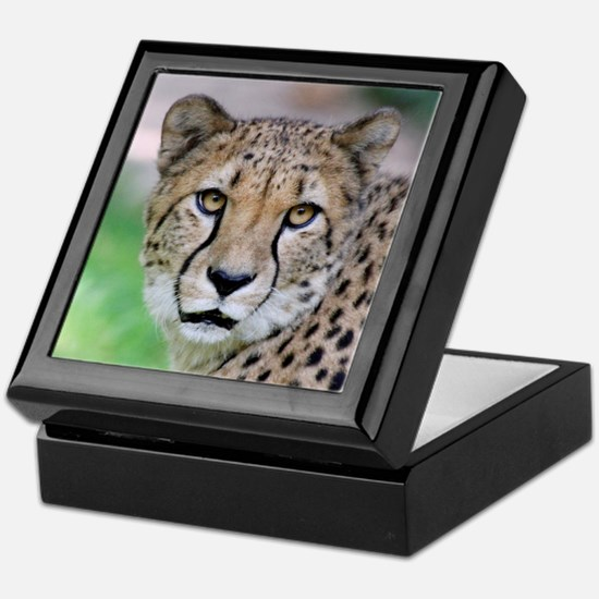 Cheetah_2014_0901 Keepsake Box