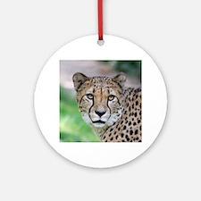 Cheetah_2014_0901 Ornament (Round)