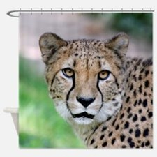 Cheetah_2014_0901 Shower Curtain