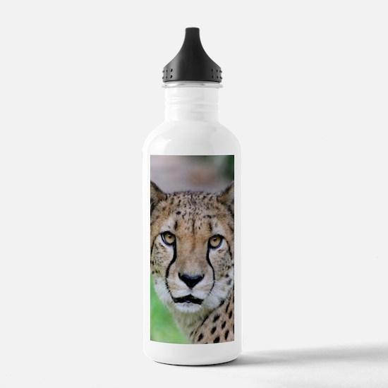 Cheetah_2014_0901 Sports Water Bottle
