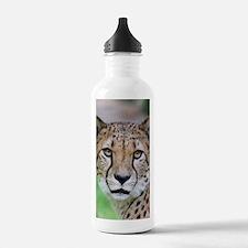 Cheetah_2014_0901 Water Bottle