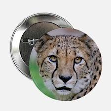 """Cheetah_2014_0901 2.25"""" Button"""
