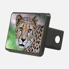 Cheetah_2014_0901 Hitch Cover