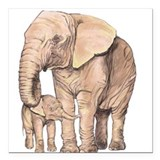 Save elephants Car Magnets